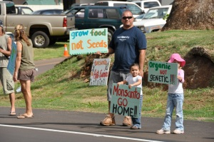 Honolulu Council passes resolution in support of GMO labeling