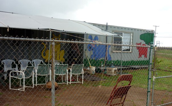 Volunteers care for Molokai Humane Society building and all its furry friends