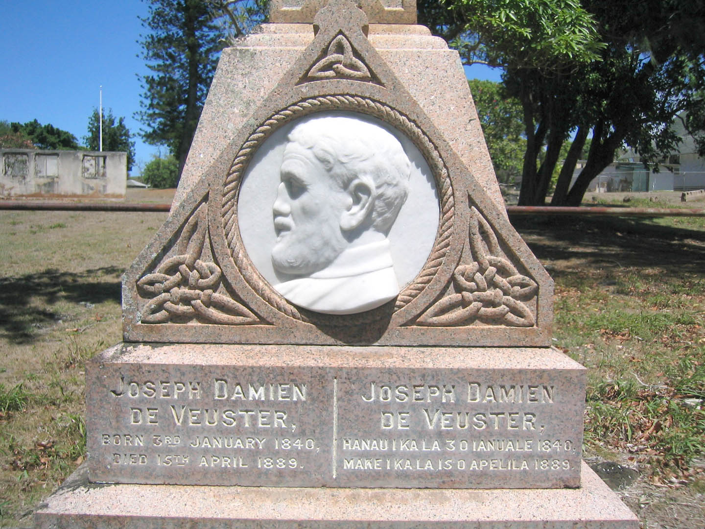 Recently published books add to legacy of Saint Damien