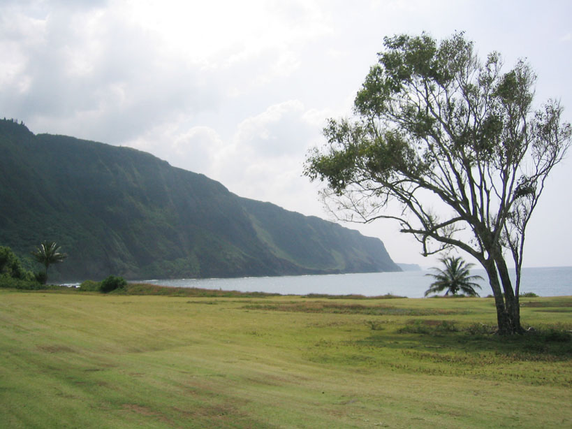 Open house meetings to discuss Kalaupapa Management Plan